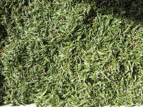 2 oz Dried Rosemary - Potpourri Supplies