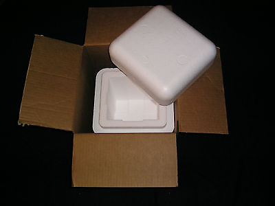 Foam Styrofoam Insulation Mailing Container Box 6 X 6 12 X 8 Inside Fragile