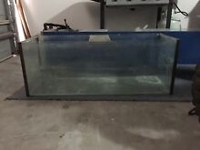 4foot tank Aberglasslyn Maitland Area Preview