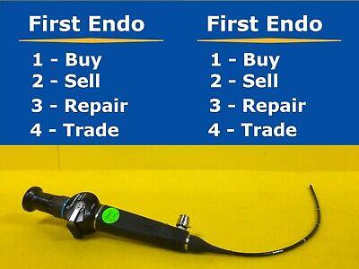 Olympus Enf-gp Rhinolaryngoscope Endoscope Endoscopy 1260-s74