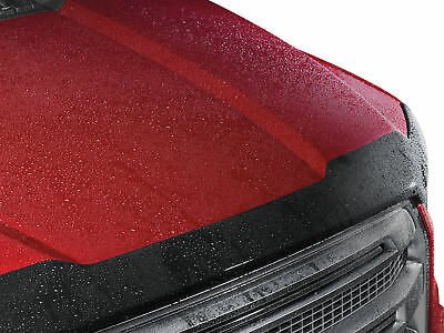 WeatherTech Low Profile Hood Protector for Toyota 4Runner -