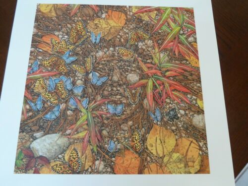 BEV DOOLITTLE Brand new SPIRIT TAKES FLIGHT hand signed and numbered