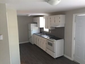 Newly Renovated triplex for sale