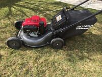 Lawn Care - Mowing & Trimming