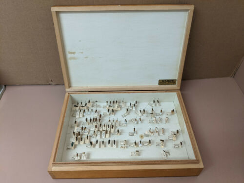 Vintage Wooden Insect Collection Display Box with Acmaeodera Beetle Collection