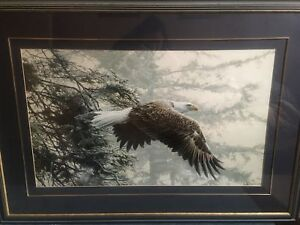Through the Firs, Ron Parker framed print