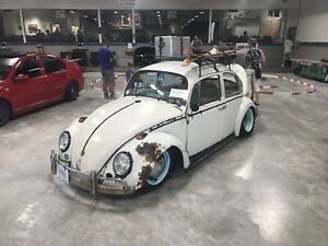 65 beetle beach rod