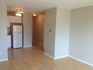Oakland Ave: Dog Friendly, Heat Incl, Bach Suites: $530/month!
