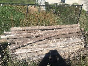 Cedar posts for you fence or project.