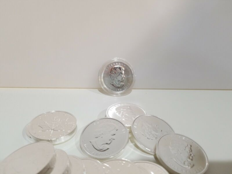 2013 Canada $5 Five Dollar 9999 Maple Leaf Silver BU Coin Free protective case!