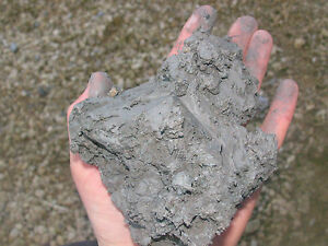 Aquatic Compost Clay Soil ideal for all Pond Plants and Gardening 5kg