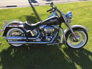 Softail deluxe 2011 1584cc