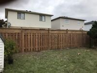 Post holes / fence construction