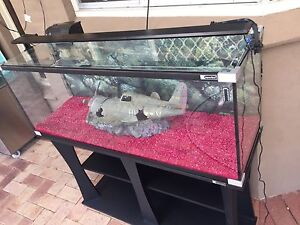 Fish Tank (4 foot) $500.00 negotiable Morley Bayswater Area Preview