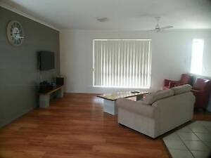 Room in a quiet & clean furnished house near uni and parks Sippy Downs Maroochydore Area Preview