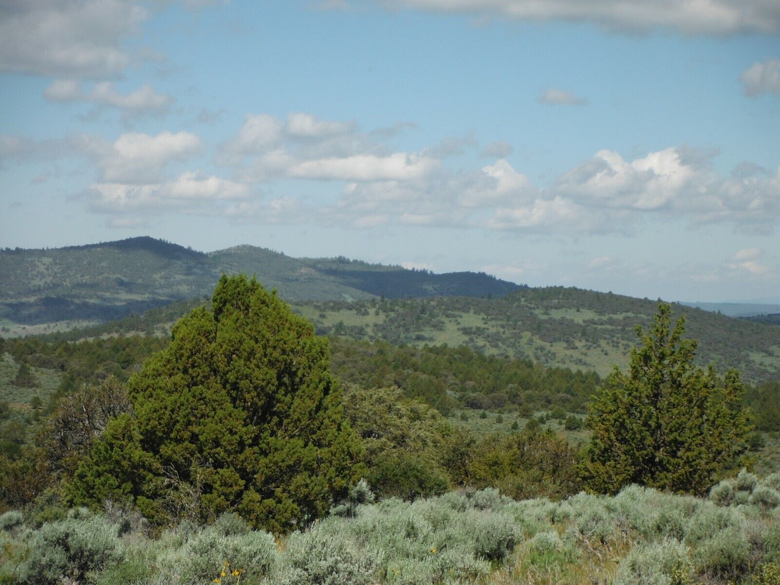 40 ACRES NORTHERN CALIFORNIA VIEW PROPERTY VIEWS