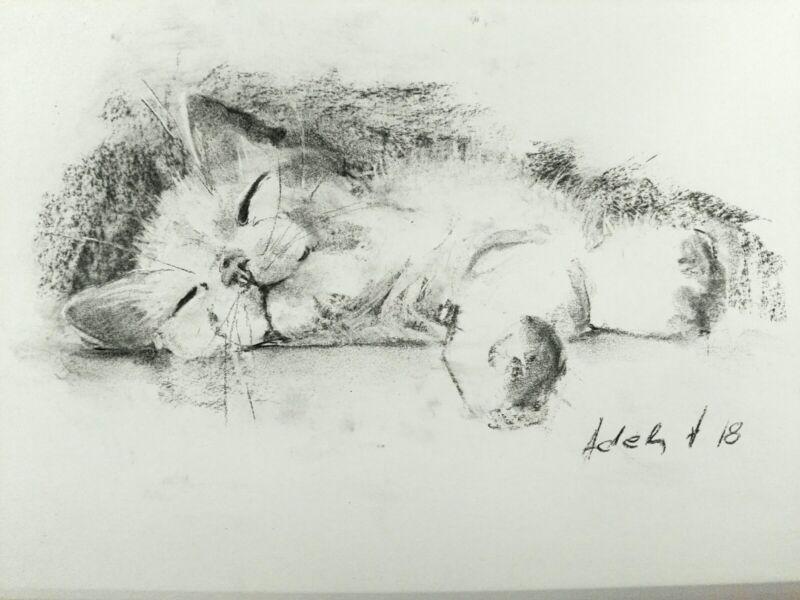Sleeping+Cat+Charcoal+Drawing+Original+Art+Pet+Sketch+A4+Pet+Portrait
