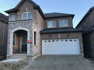 BRAND NEW DETACHED HOUSE FOR RENT(MAYFEILD/DIXIE)