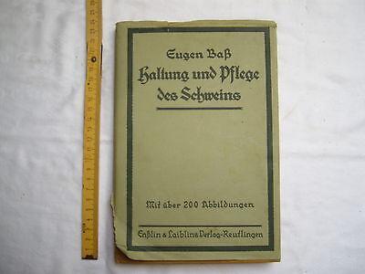 Haltung und Pflege des Schweins , Eugen Baß , 1924