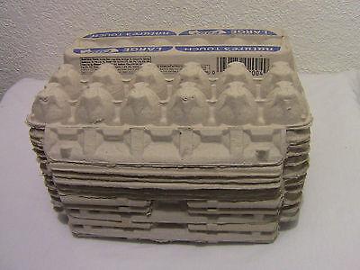 12 Pcs Egg Cartons Paper 12 Ct Eggs Crafts