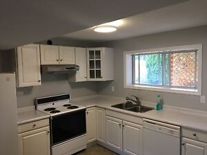 1 bedroom newly renovated basement suite in Easthill