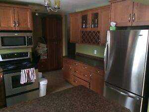 Looking for a cool new roommate for our furnished house