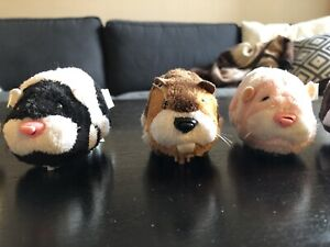 Zhu Zhu Pets in great condition with play set.
