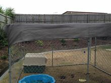 Large Dog Cage Ipswich Ipswich City Preview