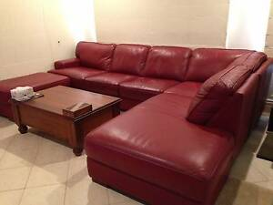 Plush leather modular lounge Lavington Albury Area Preview