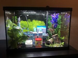 20 Gallon Top Fin Fish Tank with LED Lighting