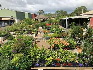 Casual Position in Retail Plant Nursery / Landscape Supply Yard