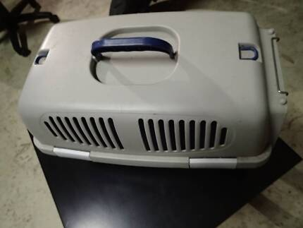 small pet carrier cats dogs kittens rats mice
