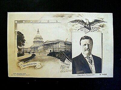 Vintage c1906 President Theodore Roosevelt & Washington Capital Eagle USA Flag