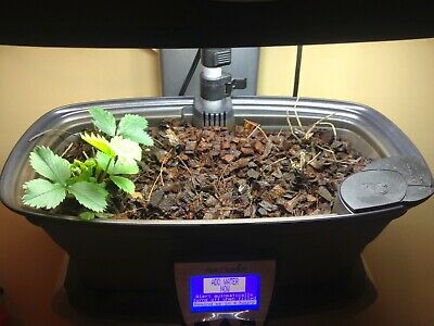 Miracle-Gro AeroGarden Grow Bowl w/ growing medium