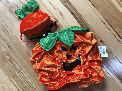 NWT Dog  PUMPKIN Costume Sz MD Fits Neck to Base of Tail 13-15 Inches - Pumpkin Costume Halloween