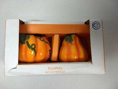 Small Ceramic Pumpkin Pumpkins Salt Pepper Shaker Set NIB