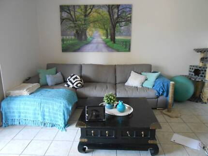 Moving Interstate - Selling TV, Couch.. WOLLIE CREEK Wolli Creek Rockdale Area Preview