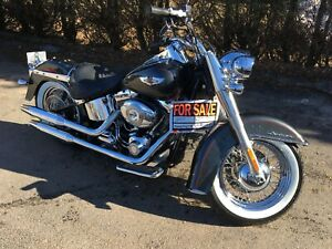 2007 HD Softail Deluxe