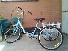Adult Tricycle Gomier Lalor Whittlesea Area Preview