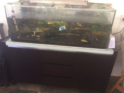 Fish tank with Cabinet tropical with heater and filter and fish