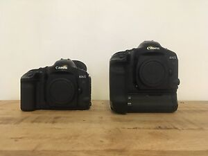 Canon Eos 1v and Eos 1vHS Sydney City Inner Sydney Preview