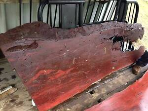 Hardwood for sale, timber slabs, Spotted Gum, seasoned  20 years Wamberal Gosford Area Preview