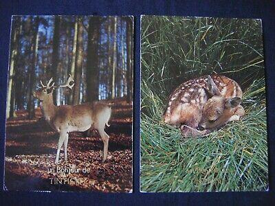 Lot de 2 cartes Un bonjour de TINTIGNY ( cerf daim faon dans la forêt )