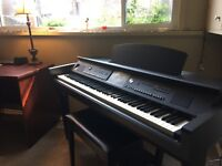 Piano Lessons in Old South