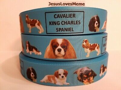 Grosgrain Ribbon Cavalier King Charles Spaniel Dog Breeds Puppy Dog Show, 1""