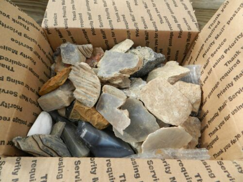 16 Pounds Bulk Lot Natural Agate Fossil Shell Tiger Eye Lapidary Mix