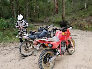 Honda nx 650 gumtree australia free local classifieds fandeluxe Choice Image