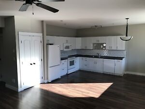 Two Bedroom Basement Suite Rental In Pineview