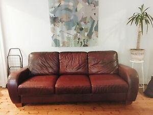 Leather Couch Paddington Eastern Suburbs Preview