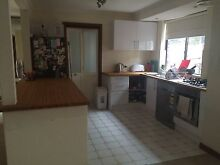 ROOM FOR RENT EAST FREO! Ascot Brisbane North East Preview